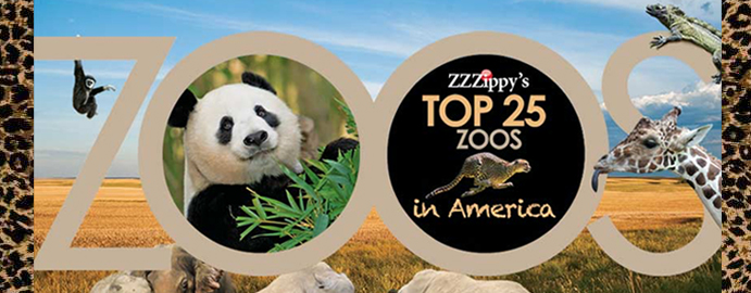 See Who Made Zippy's List!