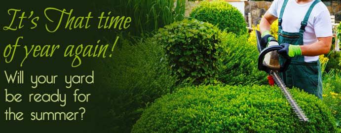 Check Out The Best Landscapers