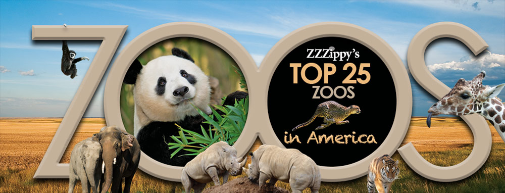 ZZZIPPY'S TOP 25 ZOOS IN AMERICA
