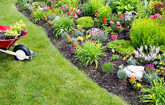 ONCE YOU ARE SURE THAT YOU ARE SAFE FROM THE COLD WEATHER, PICK A SPOT  THATu0027S NICE AND SUNNY FOR YOUR FLOWER GARDEN